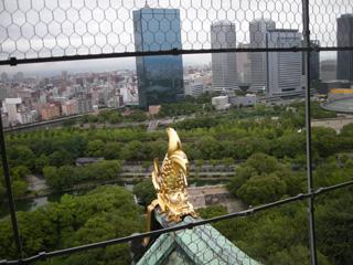 20090725osakajo3.jpg